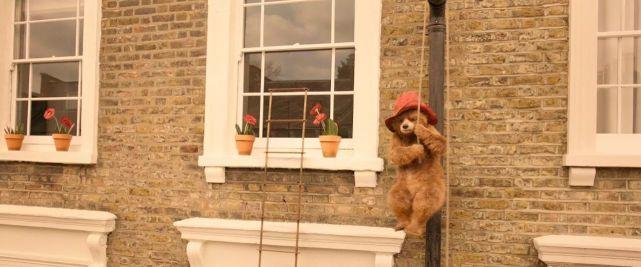 《帕丁顿熊2》剧照7.jpg