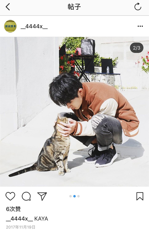 易烊千玺与猫.jpg